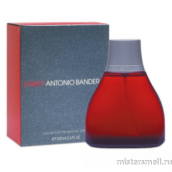 Купить Antonio Banderas - Spirit, 100 ml оптом